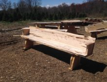Spruce Bench – CIA
