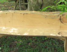 Spruce Bench with Back 2